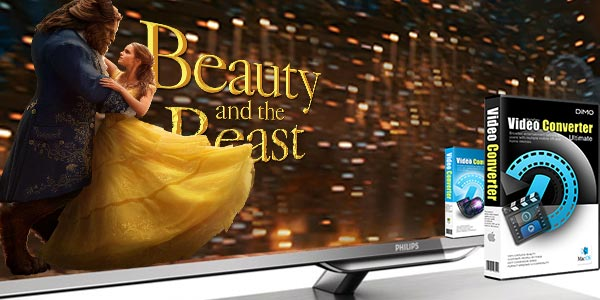 Encoding MP4 for Playback on Philips TV with USB - MP4 Pedia
