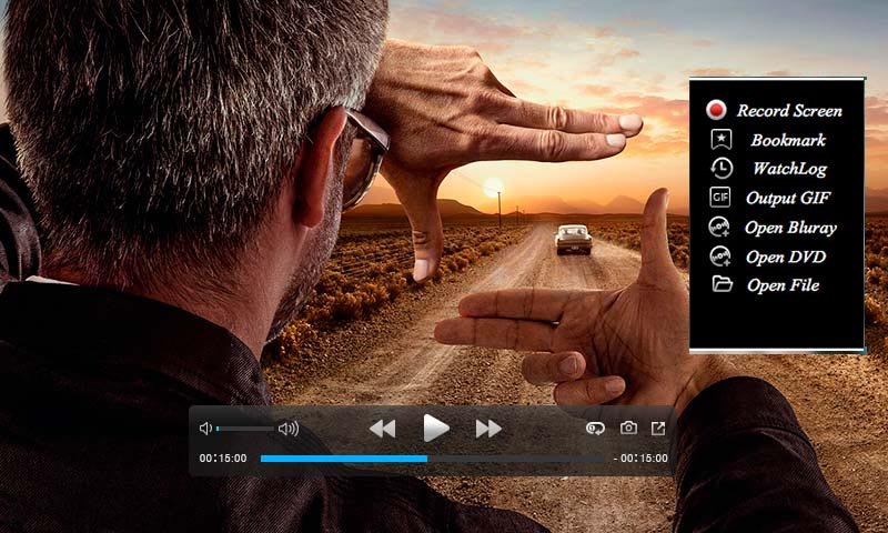 The best FLV video player