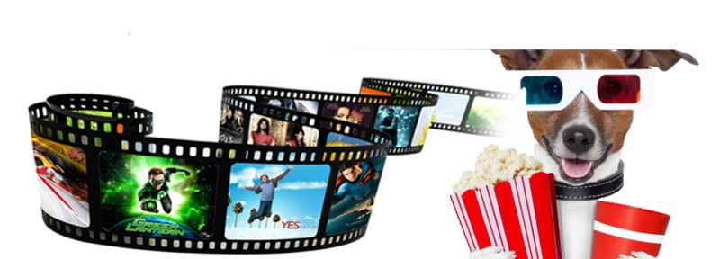 Xmas DVDs 2016 : Top Christmas DVDs to Buy or Rent and  The Best Christmas DVD Backup Tool