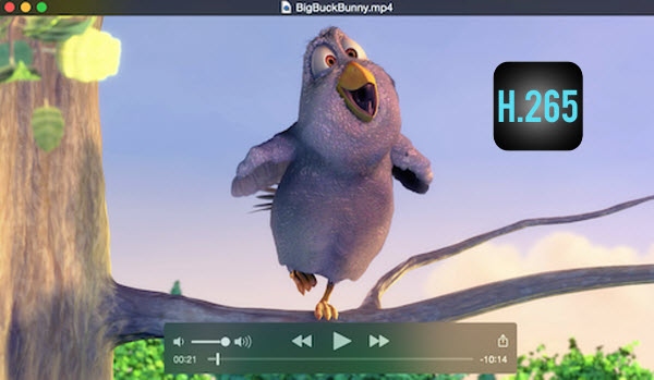 How to Open H 265 Video Files in QuickTime Player - Guide for video apps