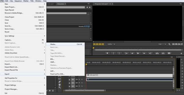 export video to premiere pro