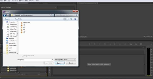 import video to premiere by media browser