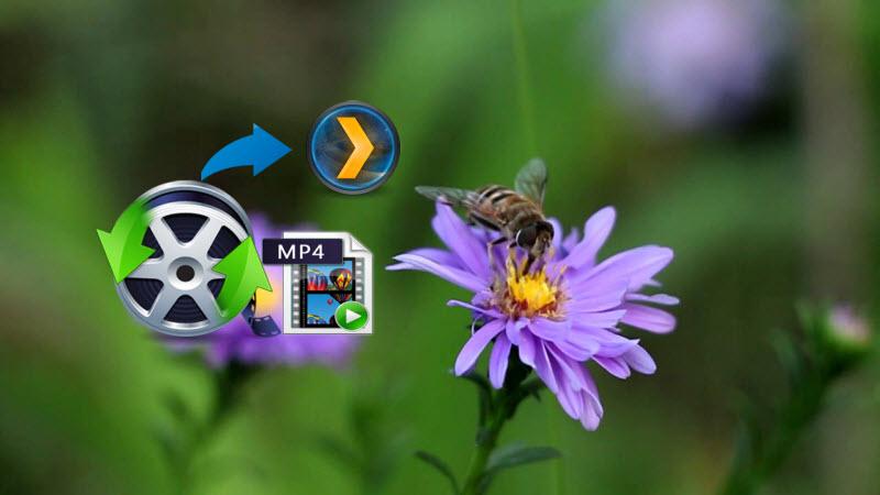 Plex MP4 Solution