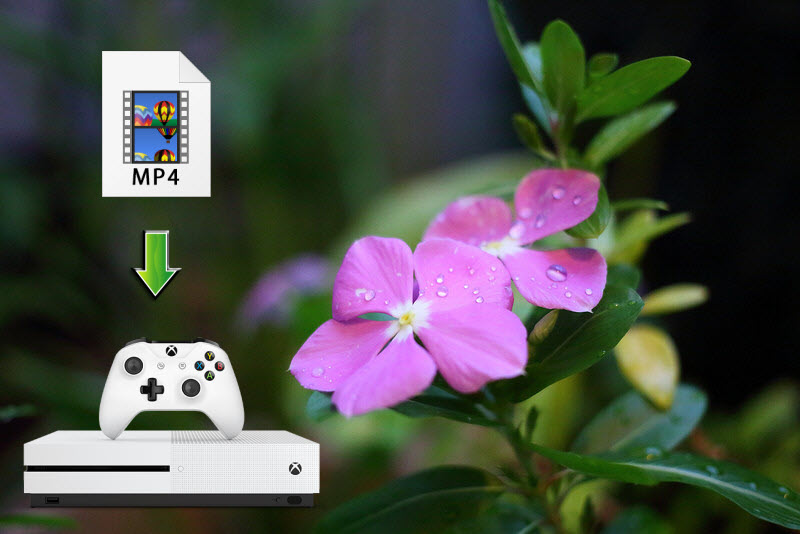 Stream MP4 to Xbox One S